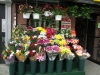 nyc-borrower-has-flower-shop-in-the-bronx