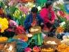 Microfinance - Market